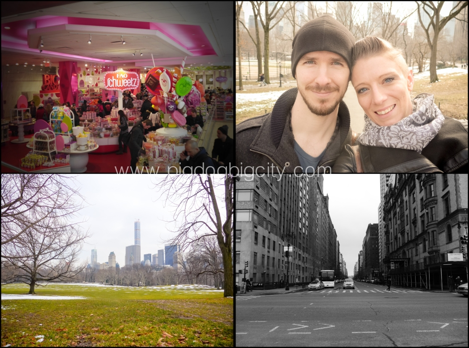 NYC Blog 5