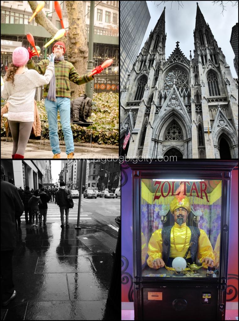 NYC Blog 8