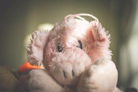 Banjo Pig Toy